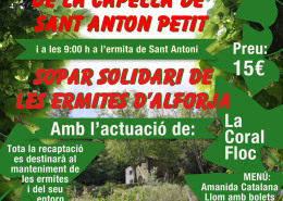 cartel-ermita-3